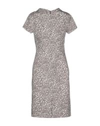 Peserico Gray Kneelength Dress
