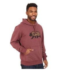 Patagonia | Brown Bear Heaven Midweight P/o Hooded Sweatshirt for Men | Lyst