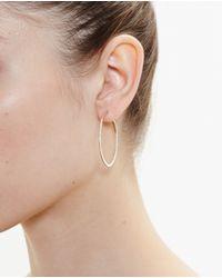 Rosa De La Cruz Metallic Small 18k Rose Gold Hoop Earrings