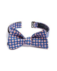 Ted Baker | Blue 'topiary Neat' Medallion Bow Tie for Men | Lyst