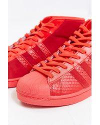Adidas   Red Originals Pro Model Snake Sneaker for Men   Lyst