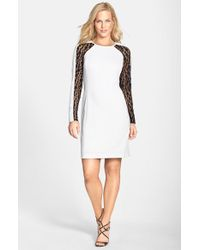Julia Jordan | White Lace Panel Sheath Dress | Lyst