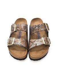 Birkenstock | Metallic Arizona Snake-Print Sandals | Lyst