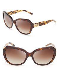 Tory Burch Brown Oversized Sunglasses