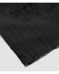 AllSaints - Gray Philomena Embroidered Scarf - Lyst