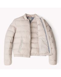 Tommy Hilfiger | Natural Down Padded Bomber | Lyst