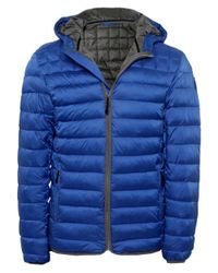 Napapijri | Blue Aerons Hood Quilted Jacket for Men | Lyst