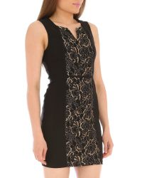 Izabel London | Black Lace Panel Bodycon Dress | Lyst
