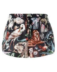 Valentino Black Fantastic Animals Shorts