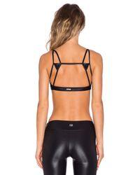 Koral Activewear - Black Element Sports Bra - Lyst