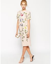 ASOS Pink Bird And Floral Embroidered Shift Dress