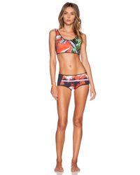 Clover Canyon - Multicolor Secret Garden Reversible Bikini Bottoms - Lyst