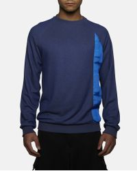 Cottweiler Blue Temple Sweatshirt for men