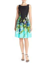 Chetta B Black 'magic' Floral Print Fit & Flare Dress