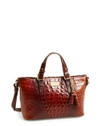 Brahmin | Brown 'melbourne - Mini Asher' Tote | Lyst