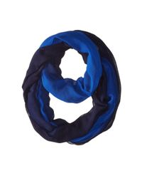 Calvin Klein - Blue Dip Dye Gauze Infinity - Lyst
