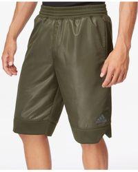 Adidas | Green Men's Black Ice Fleece Shorts for Men | Lyst
