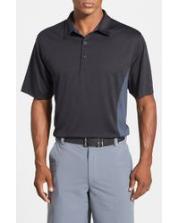 Cutter & Buck Black 'willows' Colorblock Drytec Polo for men