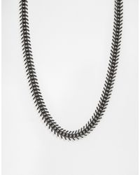 ASOS | Chain Interest Necklace In Black Fishbone for Men | Lyst