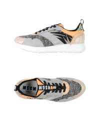 MSGM | Gray Low-tops & Trainers | Lyst