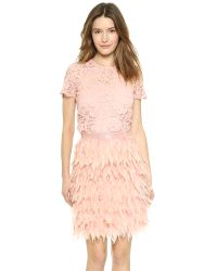 DKNY Pink Short Sleeve Lace Top - Blush