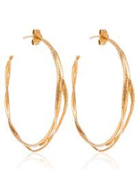 Alex Monroe Metallic Gold Fine Twist Hoop Earrings