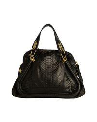 Chloé Black Paraty Python Bag