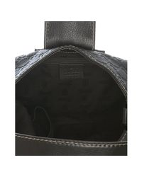 Gucci | Brown Ssima Ladies Web Medium Hobo Bag | Lyst