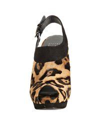 Stuart Weitzman - Multicolor Leopard Cow Hair Colorado Platform Slingbacks - Lyst