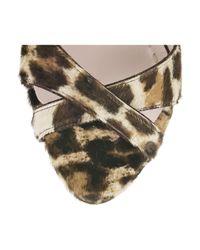 Miu Miu   Multicolor Leopard-print Calf Hair Sandals   Lyst