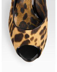 Dolce & Gabbana   Multicolor Pony Hair Peep-Toe Pumps   Lyst