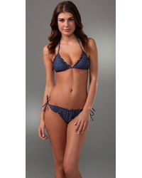 Splendid | Blue Swim Lola Pin Dot Triangle Bra | Lyst