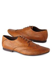 KG by Kurt Geiger Brown Cross Tan Brogue Shoes for men