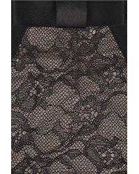 Myla Black Petunia Lace Briefs