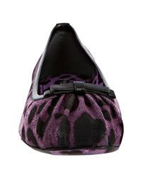 Dolce & Gabbana   Purple Violet Leopard Print Denim Ruched Ballerina Flats   Lyst