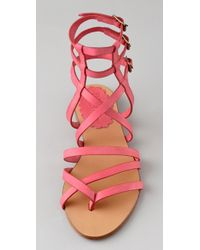 RED Valentino - Pink Flat Thong Gladiator Sandals - Lyst