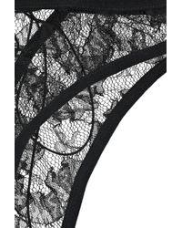 Damaris Black Risqué Lace Corset Briefs