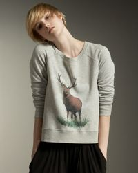 Stella McCartney | Gray Stag Print Sweatshirt | Lyst