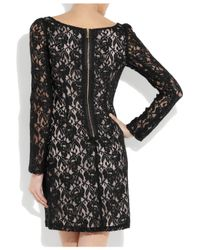 Alice By Temperley Black Lace Shift Dress