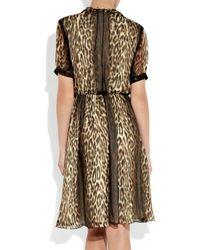 Jason Wu Multicolor Okal Animal-print Silk-chiffon Dress