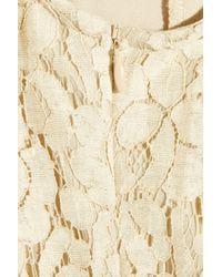 W118 by Walter Baker - Natural Violet Cotton-blend Lace One-shoulder Dress - Lyst