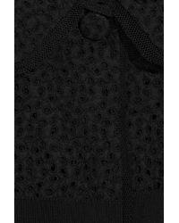 Luisa Beccaria Black Broderie Anglaise Cotton Bolero
