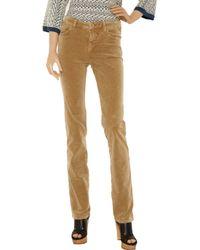 Daks Brown Velvet Straight-leg Pants