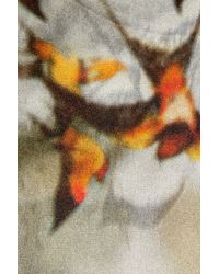 Erdem Gray Mayken Swallow-print Silk Dress