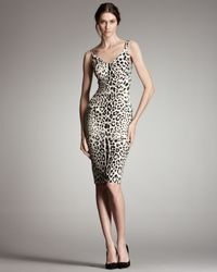 Dolce & Gabbana | White Leopard-print & Lace Dress | Lyst