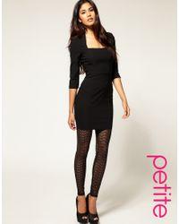 ASOS Collection Black Asos Petite Lace Mesh Legging