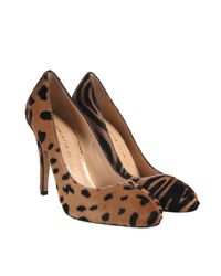 Charlotte Olympia | Brown Leopard and Zebra Foal Jenny Court Shoes | Lyst