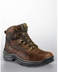 Timberland | Brown Waterproof Chocorua Trail Gore-tex Hiker Boots for Men | Lyst