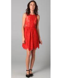 Tibi | Red Lace Dress | Lyst