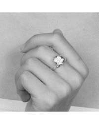 Shaun Leane | Metallic Small Cherry Blossom Ring | Lyst